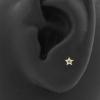 Gold Swarovski Zirconia Star - Threadless