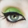 Pro Matte Eye Shadow - Toxic