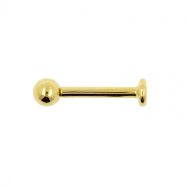 Gold Labret Stud