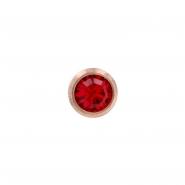 Jewelled insert for Bioplast labret