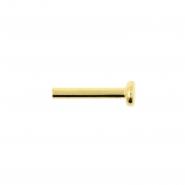 Gold Mini Labret Stud