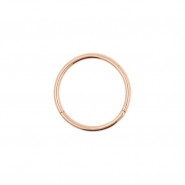 Titanium Click Ring