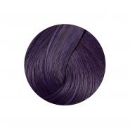 Directions Hair Dye - Plum