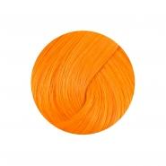 Directions Hair Dye - Apricot