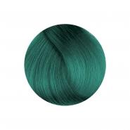 Herman's Amazing - Tammy Turquoise